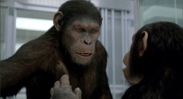 Image - A caesar and cornelia.jpg | Planet of the Apes ...