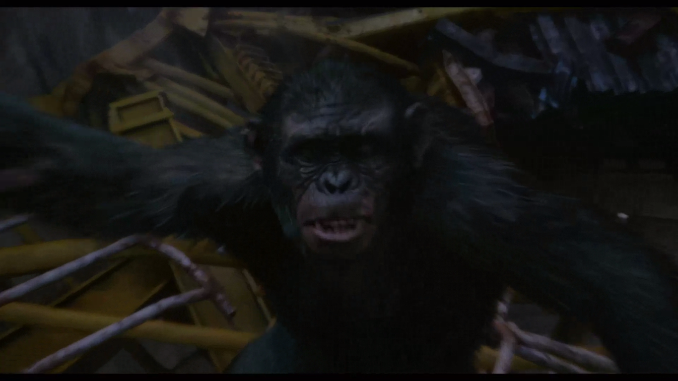 Dawn of the Planet of the Apes Film  TV Tropes