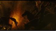 River's horse stunbles