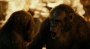 Koba signs Stone and Grey that young apes and females stay in Ape Village