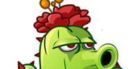 Cactus (PvZ: AS)