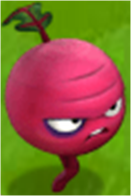 File:Beet in the Game.png