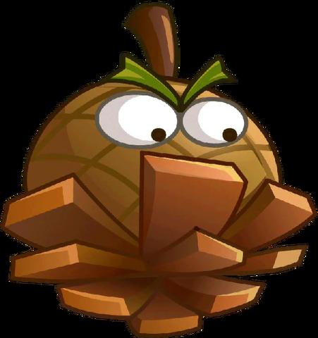 File:Hazelnut close up.png