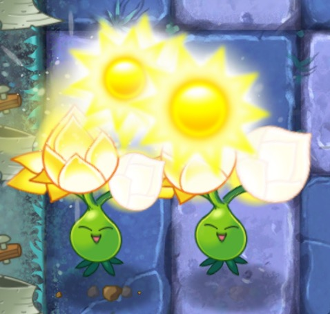 File:Double Gold Bloom.jpg
