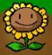 PVZ1 Sunflower concept