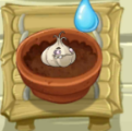 File:Tiny Thirsty Garlic.png