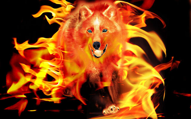 File:Flamingwolf.jpeg