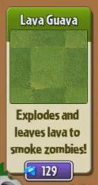File:Shop empty lawn lava guava.jpeg
