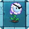 File:Bubble Flower pirate.png