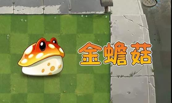 File:Toadstool.jpg