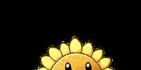 Sunflower (PvZ: AS)