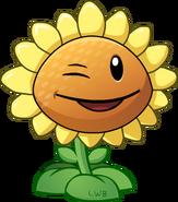 Winkflower