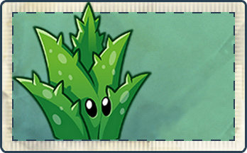 File:Aloe Vera Seed Packet Full.png
