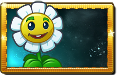 File:Marigold New Premium Seed Packet.png