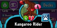 Kangaroo Rider