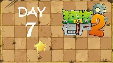 Kung Fu Day 7 FS