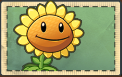 File:Sunflower without sun.png