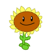 SunflowerItsabouttime