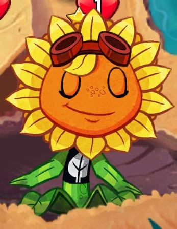 File:Solar Flare blinking.jpeg