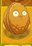 File:Wallnutongold.png