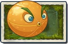File:Citron Lost City Seed Packet.png