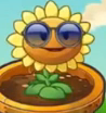 File:Sunflower.costume.png