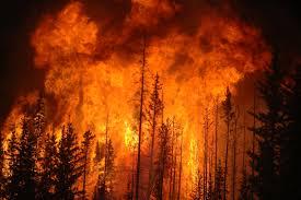 File:Burn.jpg