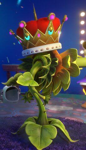 File:Everlasting Crown Face On Sunflower.jpg