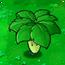 Umbrella Leaf1