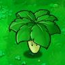 Umbrella_Leaf1.png