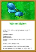 Winter Online