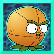 Citronicon