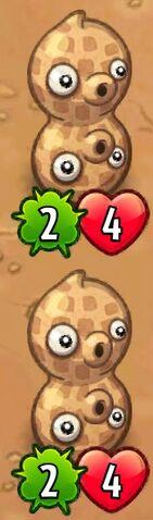 File:Double Pea-Nut.jpeg