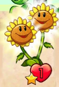 File:Twin Sunflower giving sun.jpeg