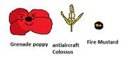Червоні маки