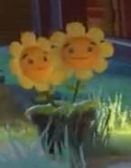 Twin Heal Flower 13