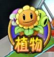 Chomper Zen Cameo