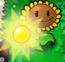 File:Sunflower Producing Sun3.PNG