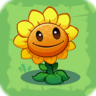 File:Sunflower3.png
