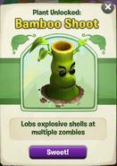 Bamboo got