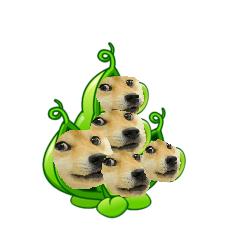 File:Pea Pod Doge.png