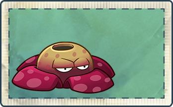 File:Rafflesia Seed Packet Full.png