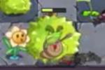 DurianPlantFood1