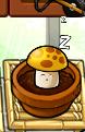 Medsunshroomsleep