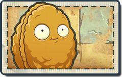File:Wall-nut New Ancient Egypt Seed Packet.png