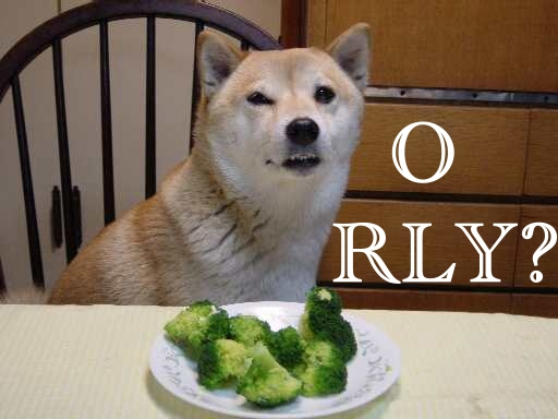 File:Orly dog.jpg