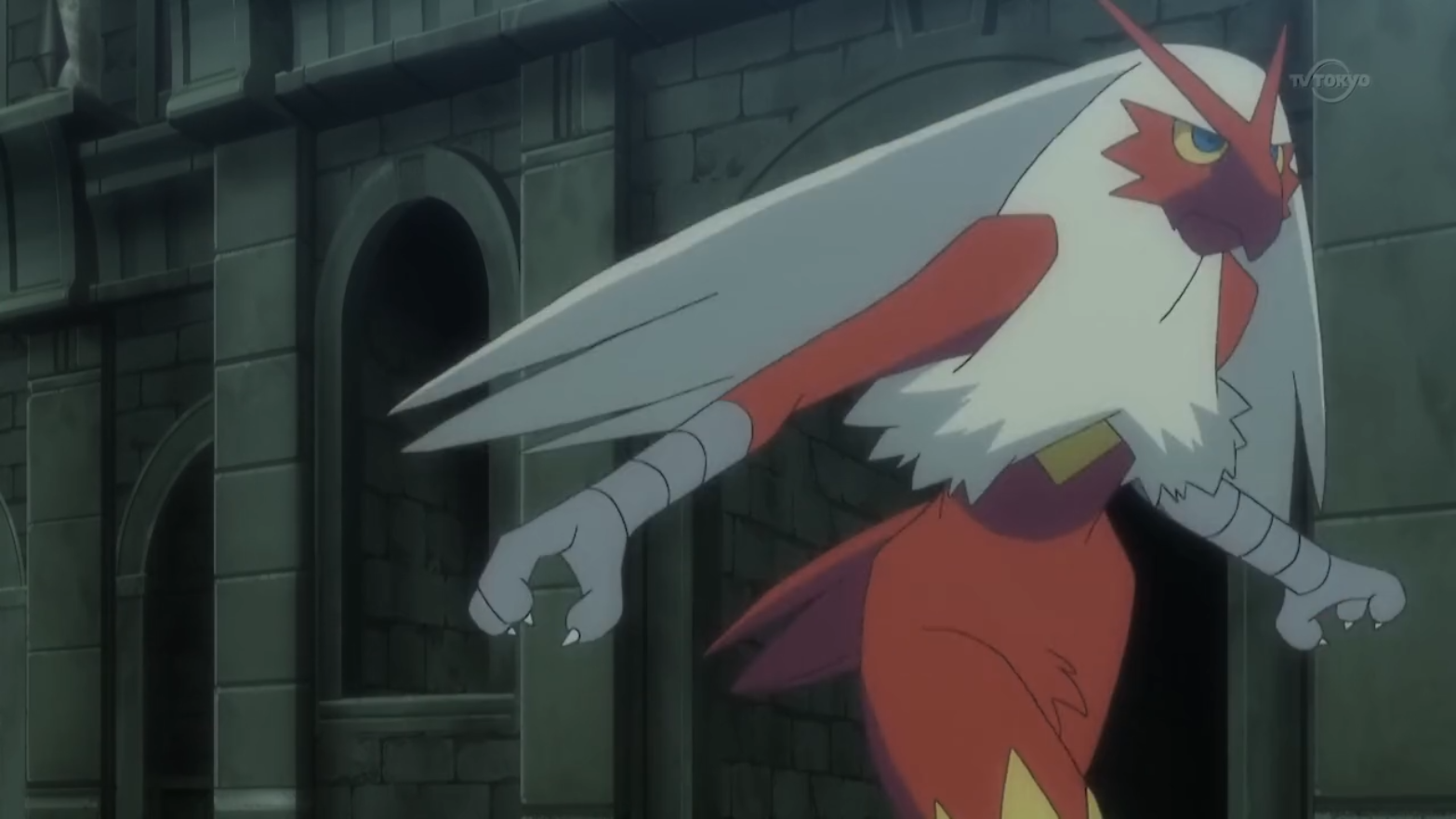 Meyer S Blaziken Pok 233 Mon Wiki Fandom Powered By Wikia