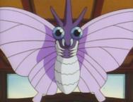 Koga Venomoth