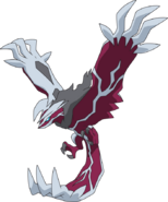 717Yveltal-Shiny XY anime