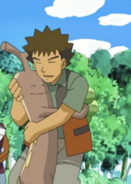 Brock and Sudowoodo